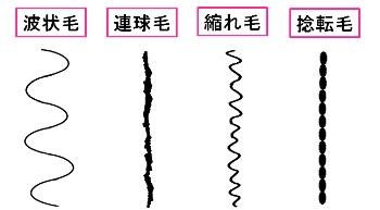 sp_kusesyurui_wh[1]